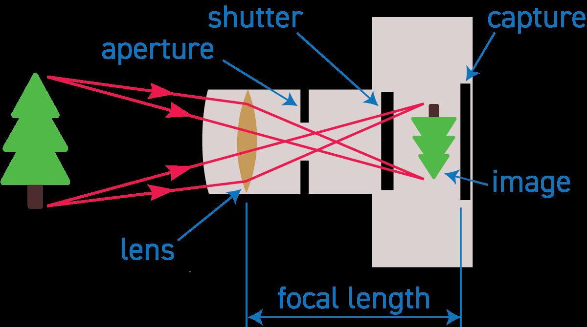 Elements of a digital camera